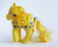 130_pony20.jpg